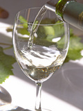 Glass of White Wine  Chateau Belgrave  Haut-Medoc  Grand Crus Classee  France