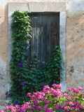 Detail of Old House  Assos  Kefalonia  Ionian Islands  Greece