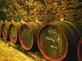 Kiralyudvar Winery Barrels with Tokaj Wine  Tokaj  Hungary