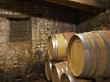 Oak Barrique Barrels with Aging Red Wine  Jute Chateau Belingard  Bergerac  Dordogne  France