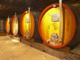 Wine Cellar and Oak Casks  Champagne Jacquesson in Dizy  Vallee De La Marne  Ardennes  France