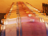 Barrel Cellar for Aging Wines in Oak Casks  Chateau La Grave Figeac  Bordeaux  France