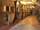Barrels of Wine Aging in Cellar  Chateau Vannieres  La Cadiere d'Azur