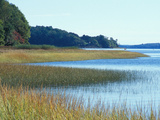 Salt Marsh Bordering the Royal River  Maine  USA