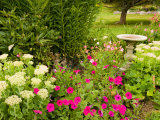 Birdbath and Flowers  Oakland House Seaside Resort  Brooksville