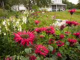 Flower Garden  Oakland House Seaside Resort  Brooksville