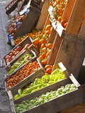 Fruit and Vegetable Shop in Wooden Crates  Montevideo  Uruguay