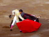 Matador at Monumental El Paso  Bullfight (Fiesta Brava)  San Luis Potosi  Mexico