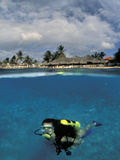 Woman Scuba Diving  Bonaire  Caribbean