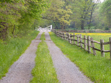 Split Rail Fence and Farm Road  Ipswich  Massachusetts  USA