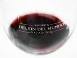 Glass of Red Wine  Bodega Del Fin Del Mundo  the End of the World  Neuquen  Patagonia  Argentina