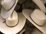 Rack with Assortment of Stylish Mexican Hats  Puerto Vallarta  Mexico