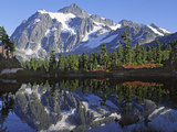 Mt Shuksan in the Fall with Red Blueberry Bushes  North Cascades National Park  Washington  USA