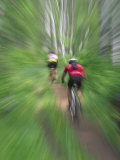 Zoom Effect of Mountain Bike Racers on Trail in Aspen Forest  Methow Valley  Washington  USA