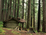 Rainforest and Sol Duc Shelter  Sol Duc Valley  Olympic National Park  Washington  USA