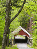 The Flume Covered Bridge  Pemigewasset River  Franconia Notch State Park  New Hampshire  USA