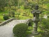 Japanese Garden at the Washington Park Arboretum  Seattle  Washington  USA