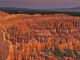 View of the Hoodoos or Eroded Rock Formations in Bryce Amphitheater  Bryce Canyon National Park
