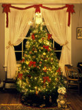 Decorated Christmas Tree Displays in Window  Oregon  USA