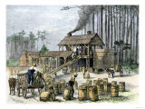 Turpentine Distillery in North Carolina  c1870