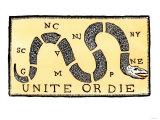 Unite or Die  c1750
