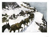 Mule Train Going to the Silver Mines of Colorado
