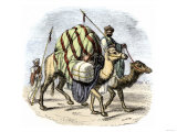 Camel Caravan Loaded with Goods