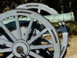 Revolutionary War French Cannon Called the Fox  Yorktown Battlefield  Virginia