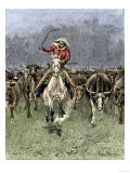 Cowboy and His Horse Caught in a Cattle Stampede  c1800