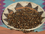 Pinon Nuts  an Important Food of Southwestern Native Americans  in an Indian Basket