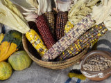 Squash  Corn  and Beans: the Three Sisters of Native American Agriculture
