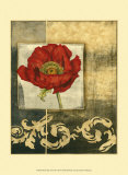 Poppy Poetry II