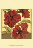 Cropped Sophisticated Hibiscus I