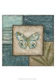 Butterfly Montage II