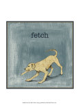 Fetch