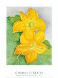 Squash Blossoms Reproduction d'art par Georgia O'Keeffe