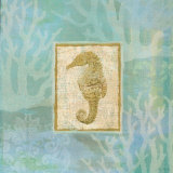 Seahorse II