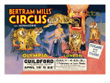 Togare and his Tigers: Bertram Mills&#39; Circus and Menagerie