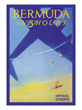 Bermuda in 5 Hours