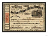 Gold and Silver Mining Company  c1865