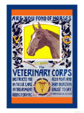 Join the Veterinary Corps