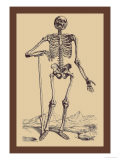 Skeleton with Shovel