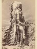 Chief Little Wound
