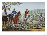 Fox Hunt