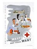 Don't Waste What Others Want: American Junior Red Cross
