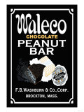 Waleco Chocolate Peanut Bar