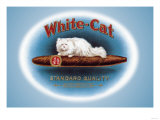 White-Cat Cigars