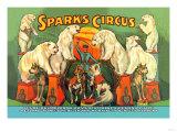 Sparks Circus