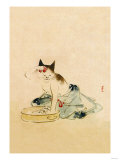 Japanese Cat Bathing