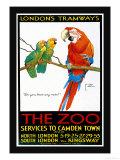 London's Tramways  The Zoo